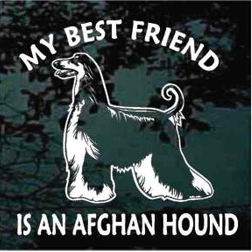 Best Friend Afghan Hound Dog Window Decal
