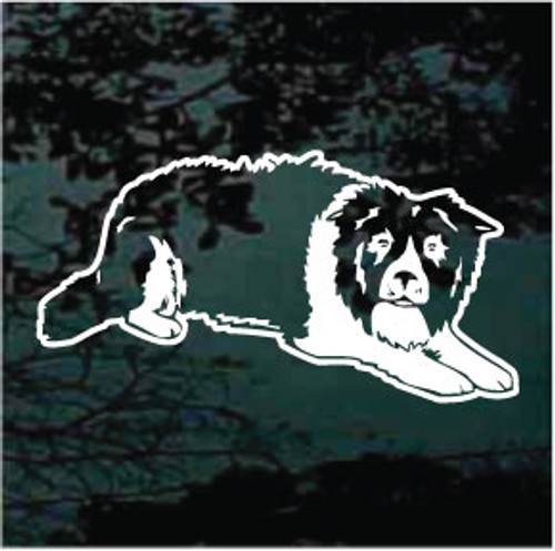 Crouching Border Collie Window Decal