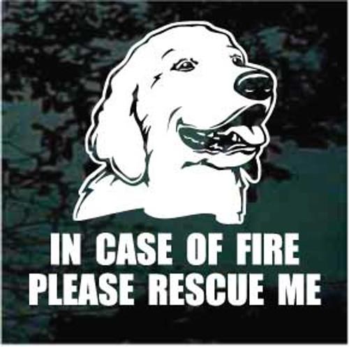 Golden Retriever 05 Fire Rescue