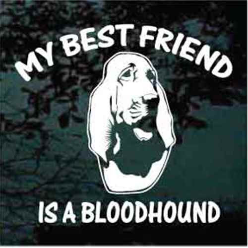 Best Friend Bloodhound Head