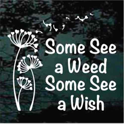 Some See A Weed Dandelion