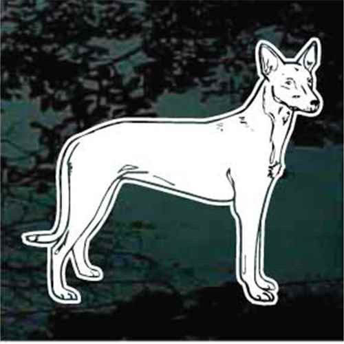 Pharaoh Hound Standing Window Decal
