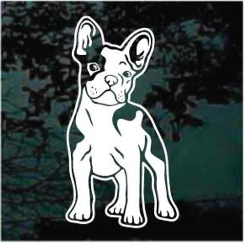 Boston Terrier Puppy Window Decals