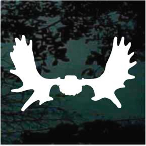Mouse Skull Mount Decals