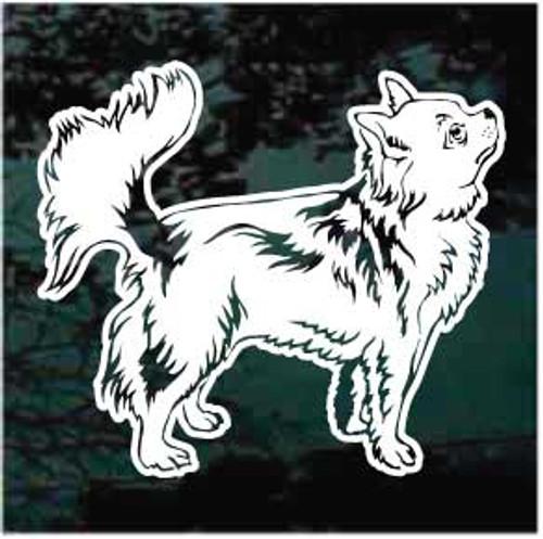 Sweet Longhair Chihuahua Window Decal
