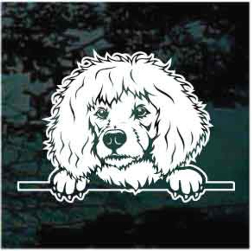 Poodle Peeking Doggie In The Window Decals