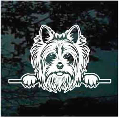 Yorkshire Terrier Peeking Doggie In The Window Decals