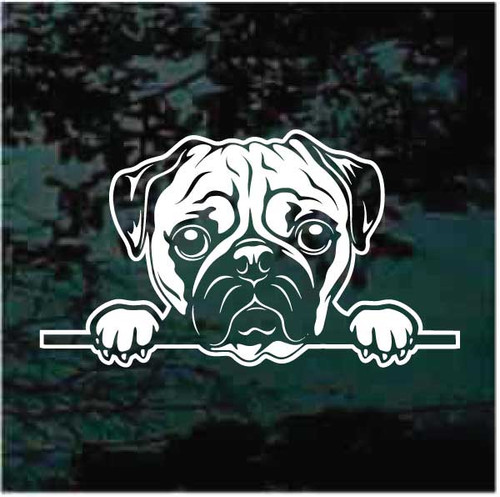 Pug Peeking Doggie In The Window Decals