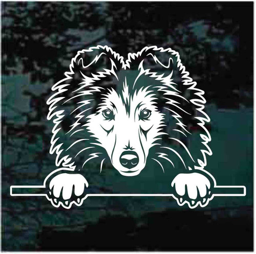 Shetland Sheepdog Peeking Doggie In The Window Decals