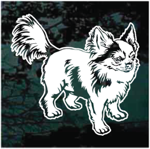 Beautiful Long Haired Chihuahua Window Decals