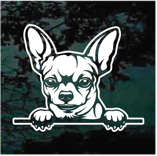 Short Haired Chihuahua Peeking Window Decals
