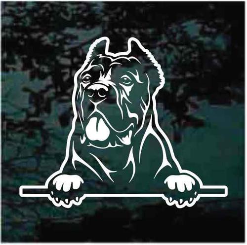 Cane Corso Mastiff Peeking Doggie In The Window Decals