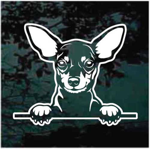 Miniature Pinscher Peeking Decals