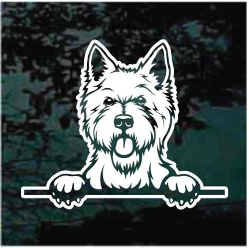 West Highland Terrier Peeking Decals