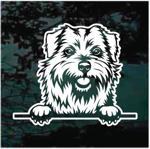 Norfolk Terrier Peeking Doggie In The Window Decals