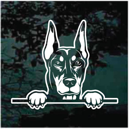 Beautiful Doberman Peeking Doggie In The Window Decals