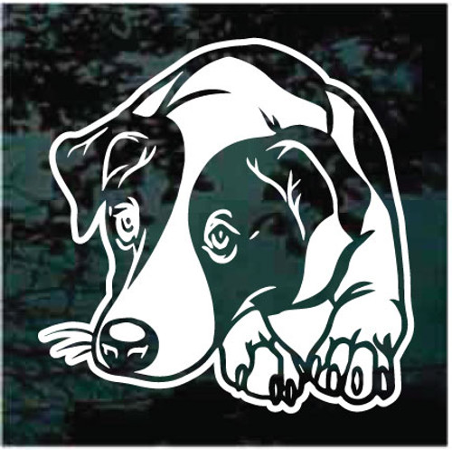Sweet Jack Russell Terrier Dog Decals