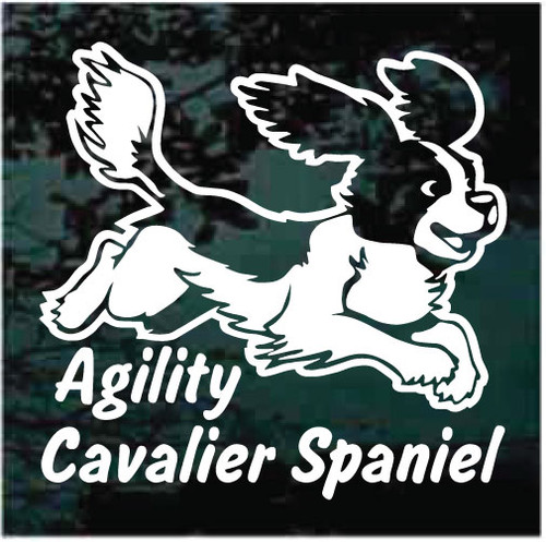 Cavalier Spaniel Agility Car Decals