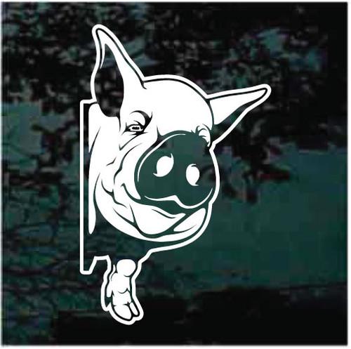 Pig Peeking Window Decals