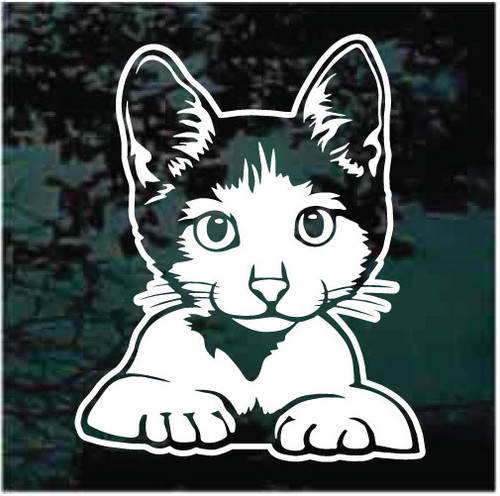 Peeking Kitty Cat Window Decals
