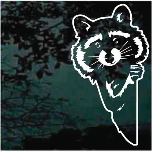 Cute Peeking Raccoon Window Decals