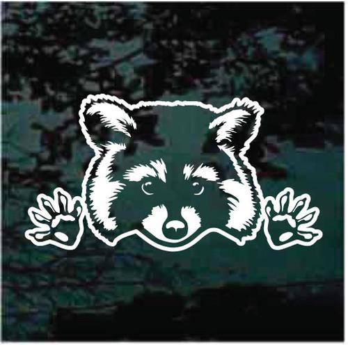 Peeking Raccoon Window Decals