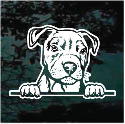 Pitbull Puppy Doggie In The Window Decals
