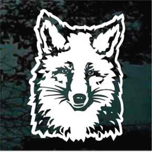 Detailed Fox Head