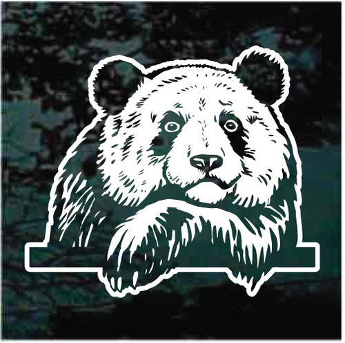 Bear Peeking In The Window Decals