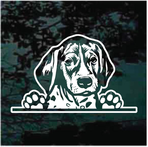 German Shorthaired Pointer In The Window Decals