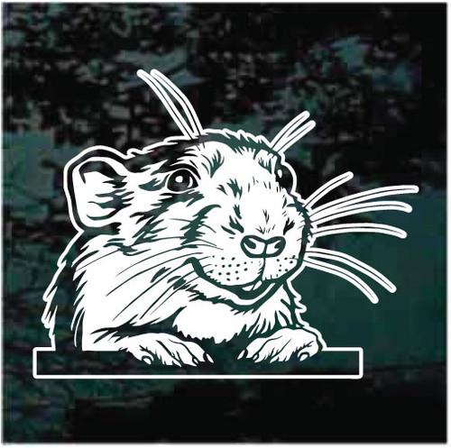 Rat Peeking In The Window Decals