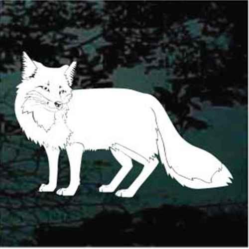 Solid Fox Standing