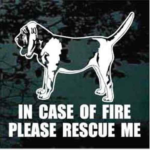Fire Rescue Bloodhound Standing
