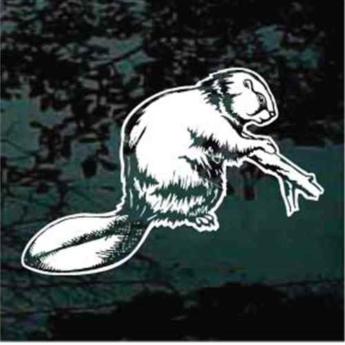 Realistic Beaver Window Decal