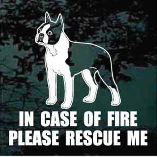 Fire Rescue Boston Terrier Standing Decals