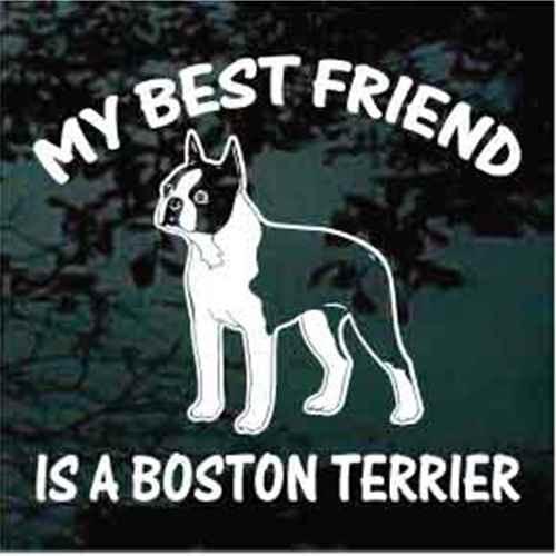 Best Friend Standing Boston Terrier Window Decal