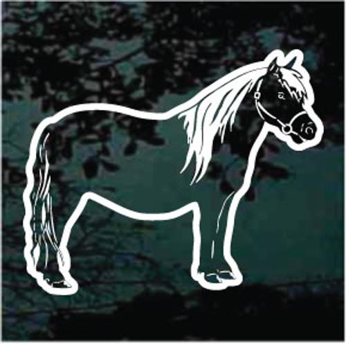 Pony Standing
