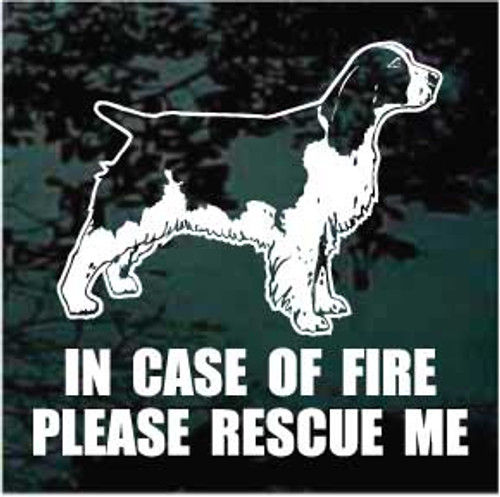 English Springer Spaniel Fire Rescue