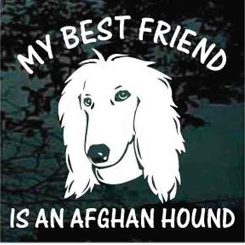 Best Friend Afghan Hound Dog Decal