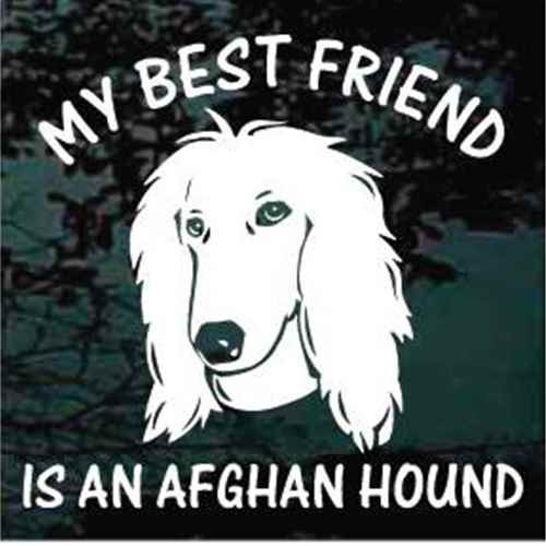 Best Friend Afghan Hound Window Decal