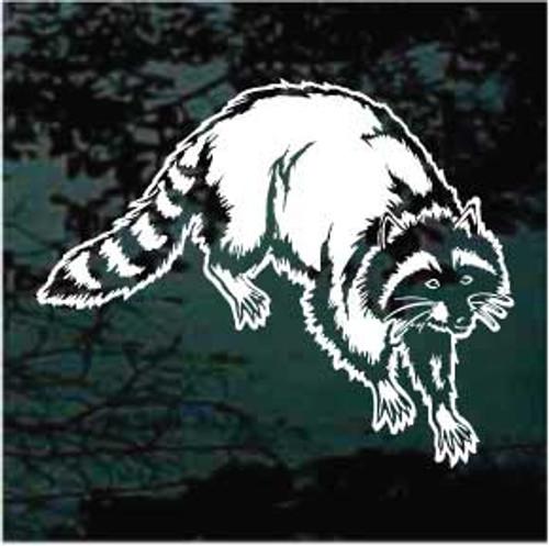 Realistic Raccoon Decals