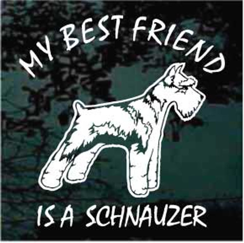 Schnauzer 01 Best Friend
