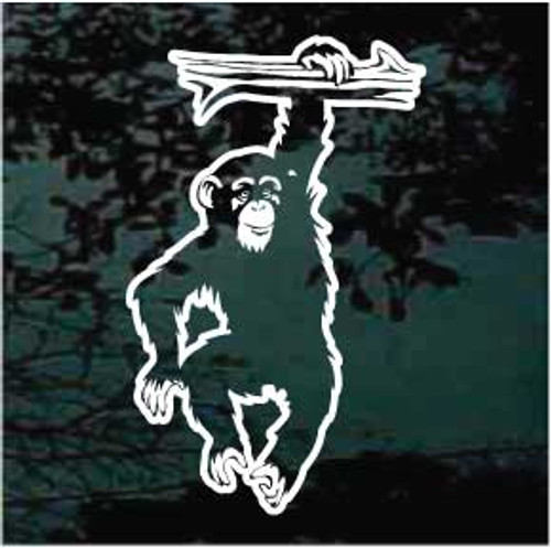 Hanging Chimpanzee Decals