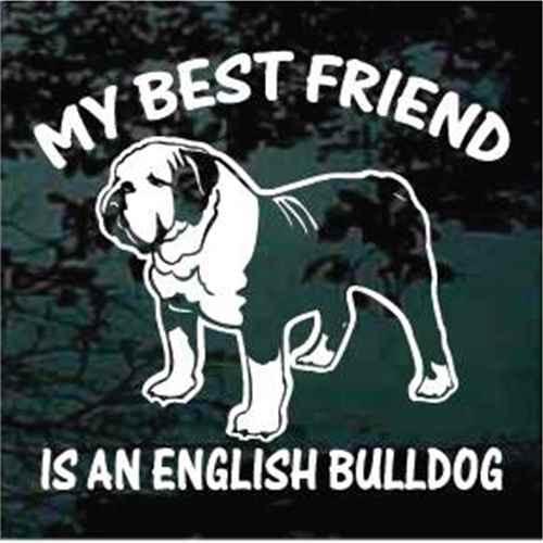 English Bulldog Detailed Best Friend Window Decal