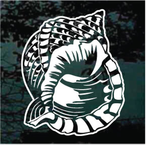 Pacific Triton Shell Window Decals