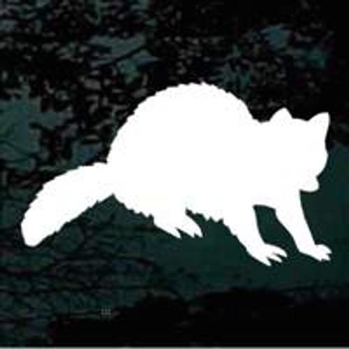 Cute Raccoon Silhouette Decals