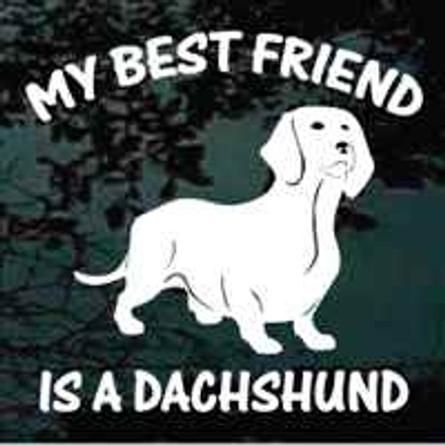 MY Best Friend Is A Dachshund