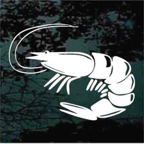 Solid Shrimp