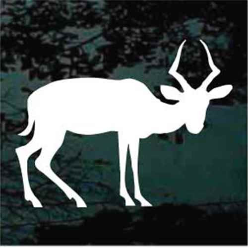 Antelope Looking Silhouette Window Decal