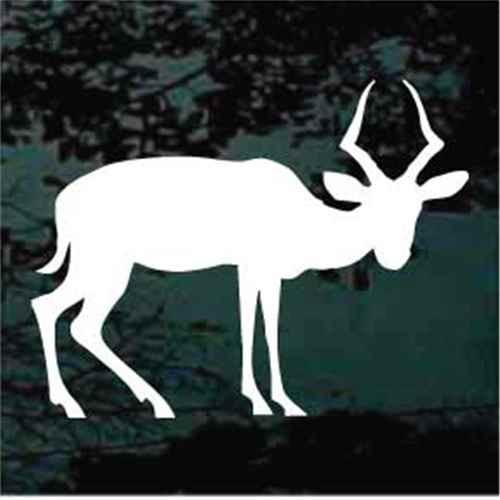 Antelope Looking Silhouette Window Decals